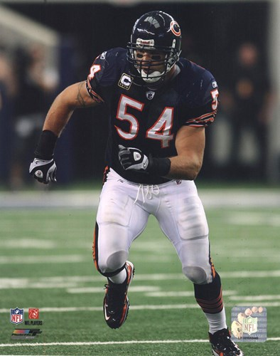Brian Urlacher 2010 Action Poster by Unknown for $21.25 CAD