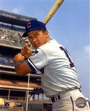 Ron Santo - With Bat, posed