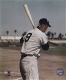 Ted Williams - Bat on shoulder