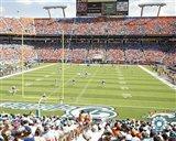 Pro Player Stadium  - N.F.L. (Dolphins)