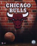Bulls - 2006 Logo