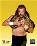 Jake The Snake Roberts - #352