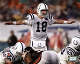 Peyton Manning Super Bowl XLI Calling Play (#13)