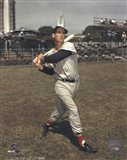Ted Williams - Posed Batting