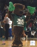 Marco - Marshall University Thundering Herd Mascot