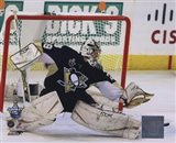 Marc-Andre Fleury Game 3 of the 2008 NHL Stanley Cup Finals Action; #11 - your walls, your style!