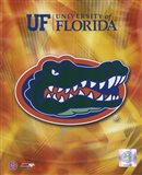 University of Florida Gators 2008 Logo