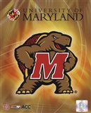 University of Maryland 2008 Logo