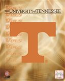 2008 University of Tennessee Logo