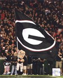 Georgia Bulldogs Mascot 2008