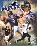 Joe Flacco 2009 Portrait Plus