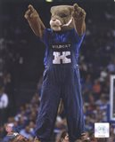 University of Kentucky Wildcats Mascot