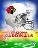 2009 Arizona Cardinals Team Logo
