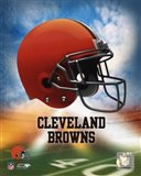 2009 Cleveland Browns Team Logo