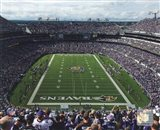 M&T Bank Stadium 2009