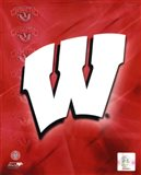 2009 University of Wisconsin Badgers Team Logo