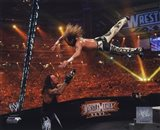 Shawn Michaels Wrestlemania 26 Action