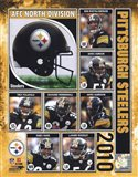Pittsburgh Steelers 2010 Composite