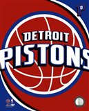 Detroit Pistons Team Logo