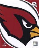Arizona Cardinals 2011 Logo