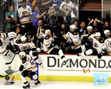 Boston Bruins Bench Celebration Game 7 of the 2011 NHL Stanley Cup Finals(#55) - your walls, your style!