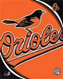 2011 Baltimore Orioles Team Logo