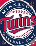 2011 Minnesota Twins Team Logo