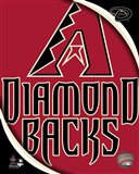 2011 Arizona DBacks Team Logo