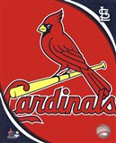 2011 St. Louis Cardinals Team Logo