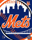 2011 New York Mets Team Logo