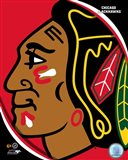 Chicago Blackhawks 2011 Team Logo