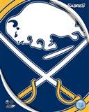 Buffalo Sabres 2011 Team Logo