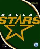 Dallas Stars 2011 Team Logo
