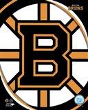 Boston Bruins 2011 Team Logo