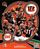 Cincinnati Bengals 2011 Team Composite