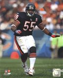 Lance Briggs 2011 Action