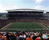 Paul Brown Stadium 2011
