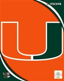 University of Miami Hurricanes Team Logo