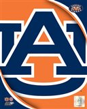Auburn University Tigers Team Logo