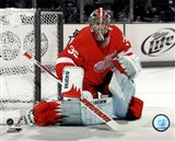 Jimmy Howard 2011-12 Spotlight Action