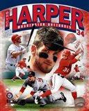 Bryce Harper 2012 Portrait Plus