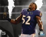 Ray Lewis 2012 Spotlight Action