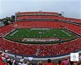 Sanford Stadium Univserity of Georgia Bulldogs 2012