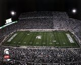 Spartan Stadium Michigan State University Spartans 2012
