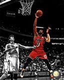 Dwyane Wade 2012-13 Spotlight Action
