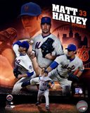 Matt Harvey 2013 Portrait Plus