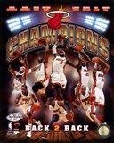 Miami Heat 2013 NBA Champions Composite