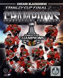 Chicago Blackhawks 2013 NHL Stanley Cup Champions Composite - your walls, your style!