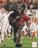 The University of Alabama Crimson Tide Mascot