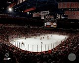 Joe Louis Arena 2013